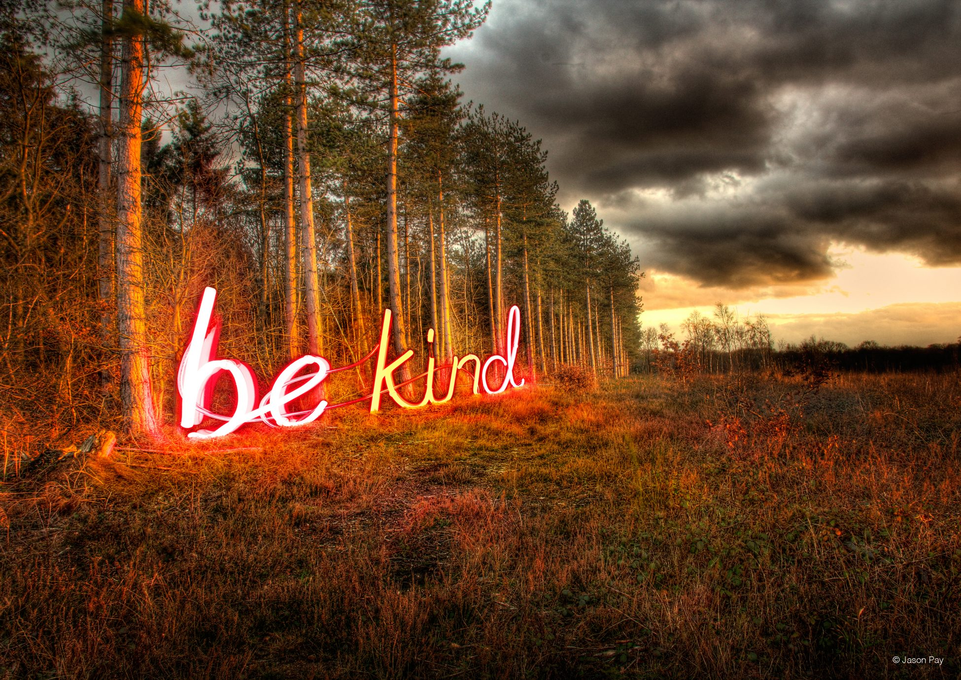 Digital artwork showing a photo of wild scrubland next to the edge of a forest. Along the tree line are giant neon letters that spell out 'be kind'. The orange and pink light from the sign is shining over the trees and scrubland.