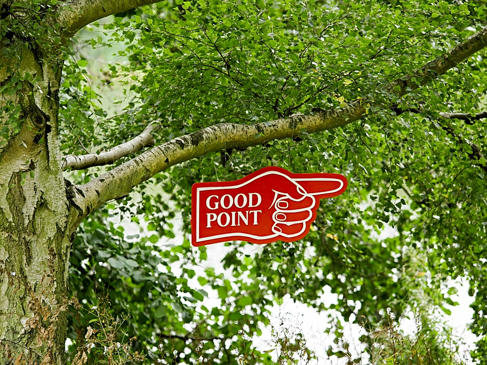 Photo of a tree with a large outstretched branch. Hanging from the branch is a red sign in the shape of a hand with it's index finger outstretched pointing to the right and the words