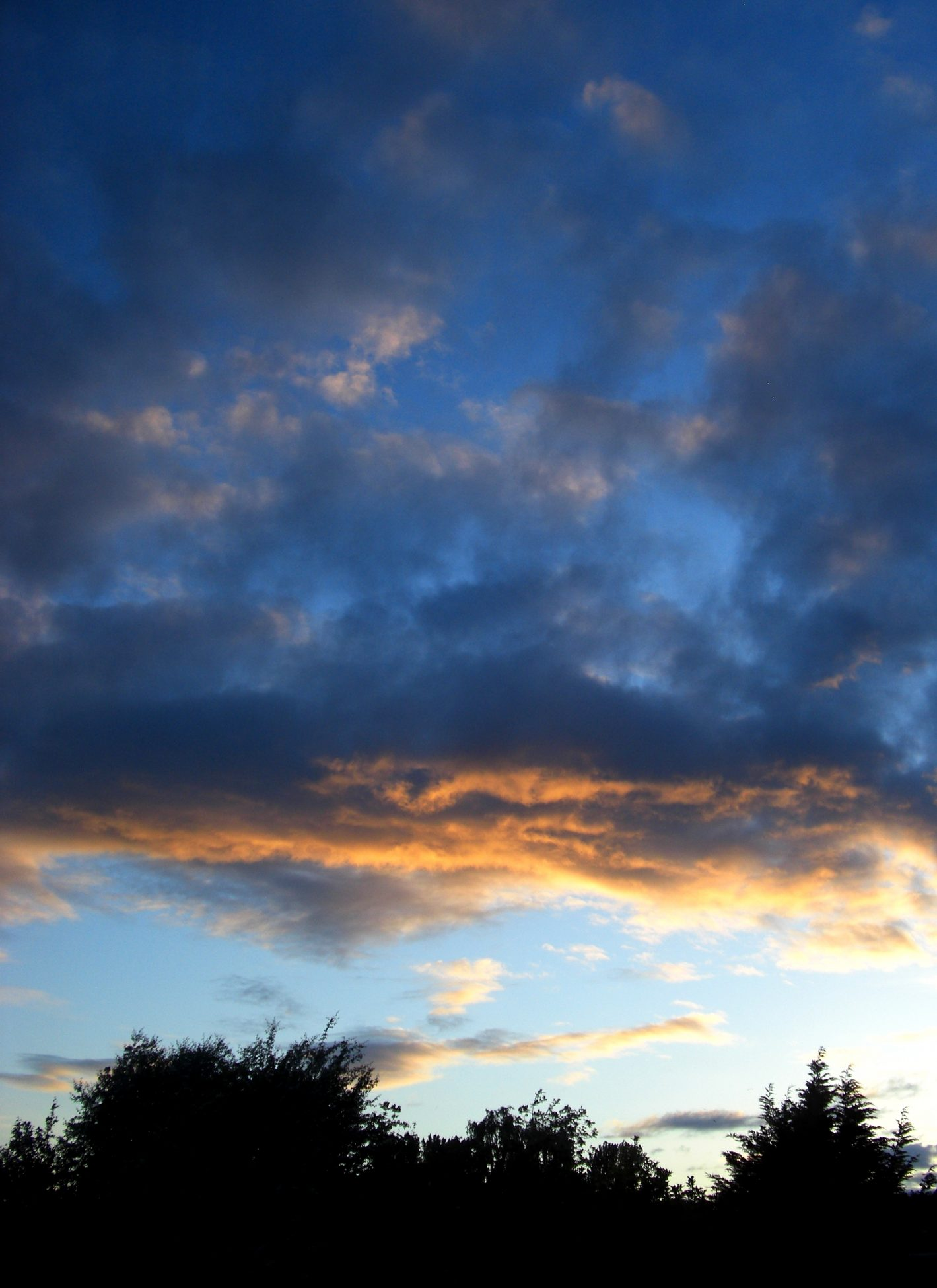 Photo of a blue sky with dark blue and orange clouds, some tree tops are in silhouette.